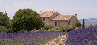 Le Pays d'Aix-en-Provence attire toujours autant !