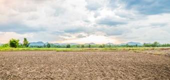 Un abattement exceptionnel sur les plus-values générées lors de la vente de terrains a été annoncé par le gouvernement